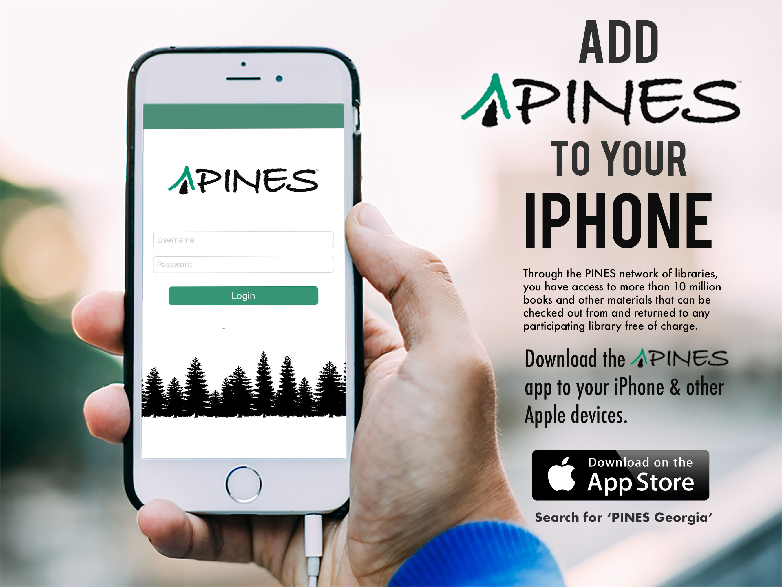 pines-for-apple.jpg